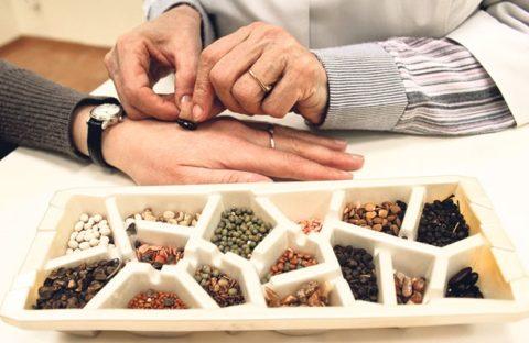 Су-Джок изначально была создана как акупунктурная семянотерапия на кистях и стопах.