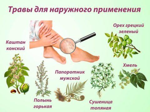 Травы для препаратов наружного применения