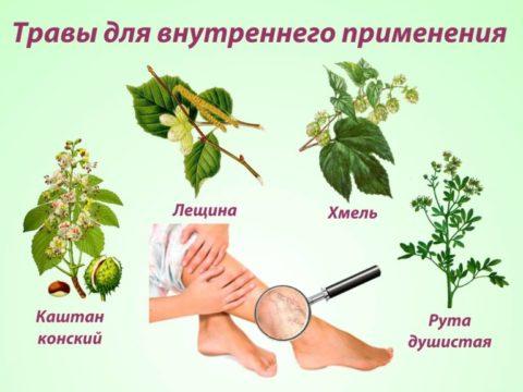 Травы для препаратов внутреннего применения