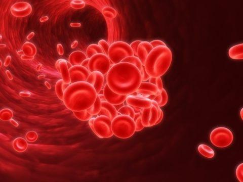 Тромбы образуются под влиянием нескольких систем, но даже нарушение в одной из них может привести к тромбозу.