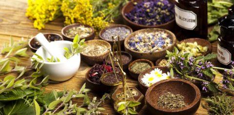 Лекарственные травы – эффективный способ устранения атеросклероза.