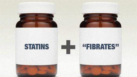 Статины и фибраты – эффективный дуэт в профилактике и лечении атеросклероза сосудов головного мозга