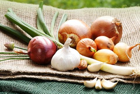 Враги холестерина – фрукты и овощи для борьбы в вредными отложениями