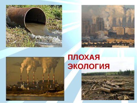 Экологическая обстановка
