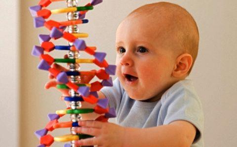 Если у родителя были проблемы с сосудами, то велика вероятность болезни и у сына.