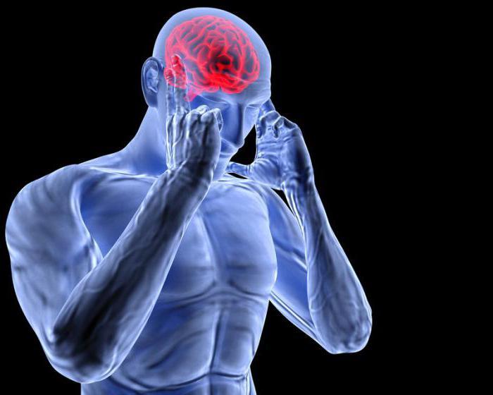 Спазм сосудов головного мозга как снять домашними методами