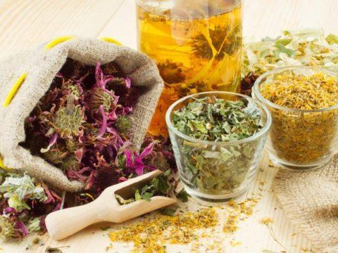 Отвары лекарственных растений отлично укрепляют сосуды