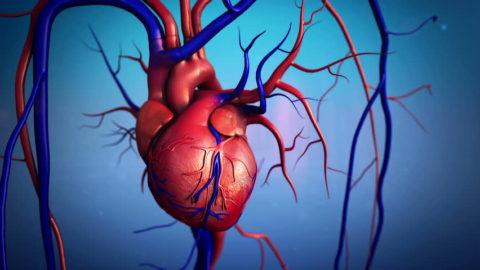 Пациенты должны постоянно контролировать состояние собственного здоровья.