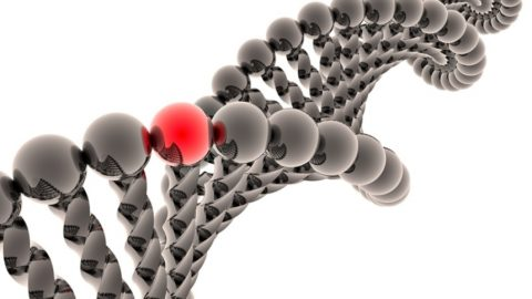Склонность к варикозу наследуется из поколения в поколение