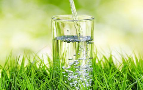 Вода это необходимая составляющая, обеспечивающая хорошее самочувствие.