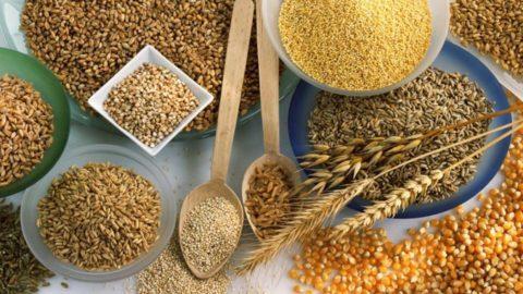 Зерновые культуры для приготовления каш