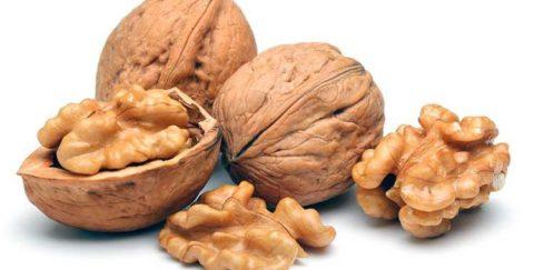 Грецкие орехи – одно из самых безопасных и мягких средств для очищения артериальных сосудов.