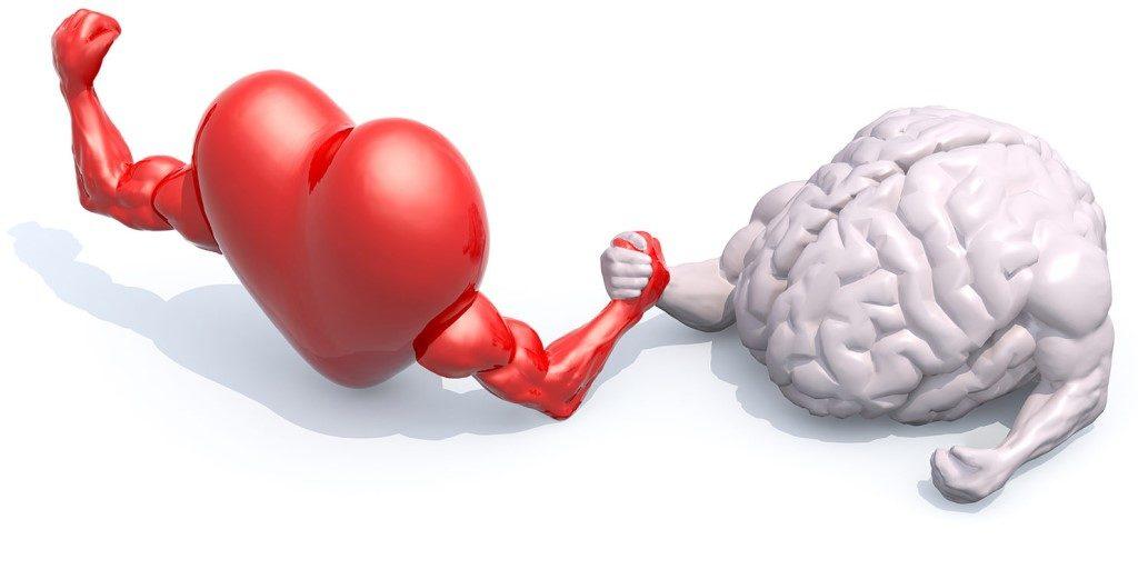 Среди всех внутренних органов сердце и головной мозг потребляют наибольший объем кислорода