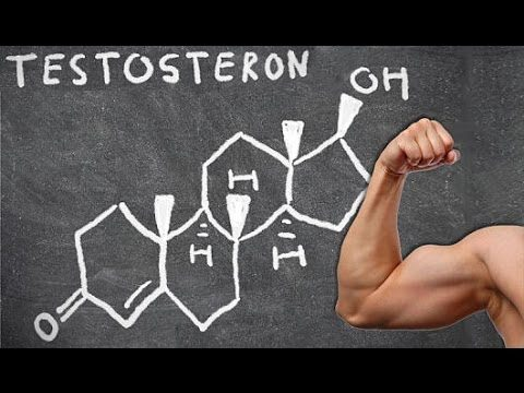 Тестостерон – главный мужской гормон