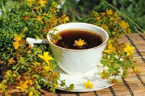 Травяной чай на основе зверобоя