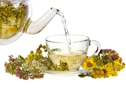 Травяные чаи, отвары и настои – идеальное средство для очищения сосудов, стимуляции процессов кровообращения и укрепления организма.