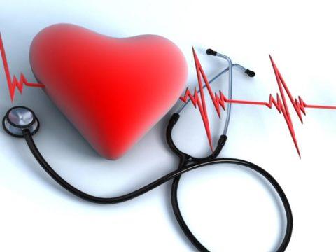 Здоровье системы кровообращения