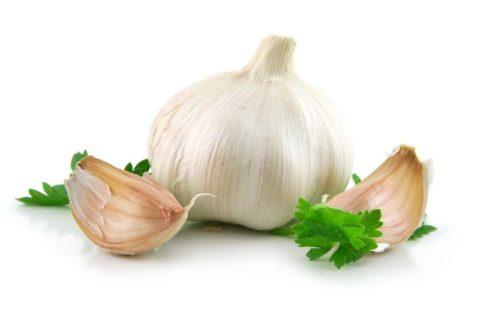 Чеснок – основа для приготовления множества целебных снадобий и домашних бальзамов.