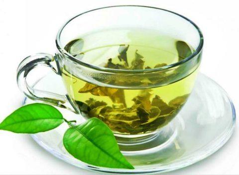 Для сохранения здоровья на долгие годы рекомендуется заменить черный чай зеленым.