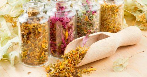 Лекарственные травы помогают снять спазм и нормализовать состояние здоровья