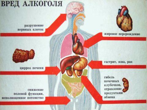 Схема негативного влияния этилового спирта на организм