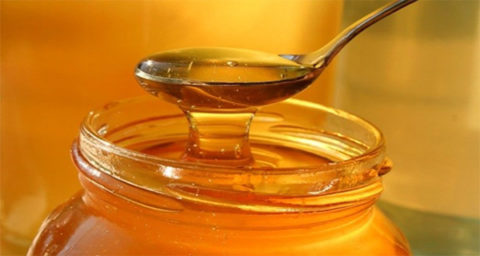 Изображение - Укроп мед и валерьянка от суставов svezhiy-med-480x256
