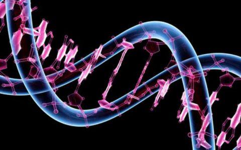 Генетическая предрасположенность как причина нарушения.