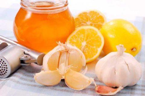 Из меда, чеснока и лимонов (на фото) можно приготовить полезную и вкусную смесь.
