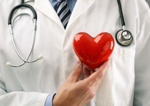 Как тренировать сосуды и сердечную мышцу.