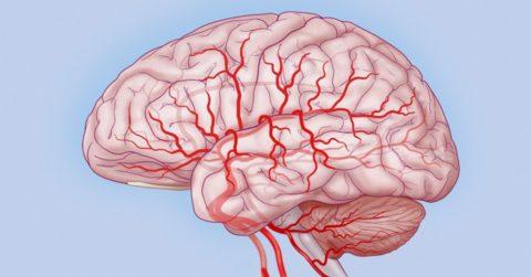 Нарушение процессов кровоснабжения головного мозга.