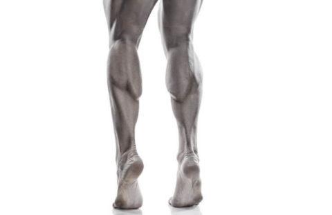 Регулярная физическая активность необходима для дренажа венозной крови.