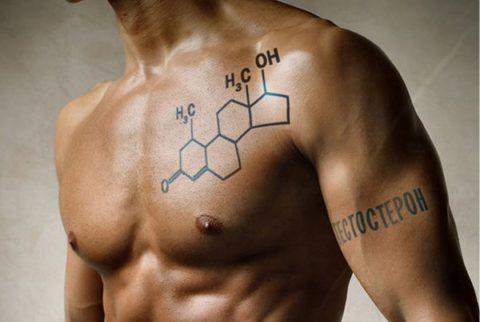 Тестостерон отвечает за проявление мужских признаков, а также половое влечение
