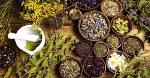 Укрепить сосуды и нормализовать кровоток помогут разнообразные травяные сборы.