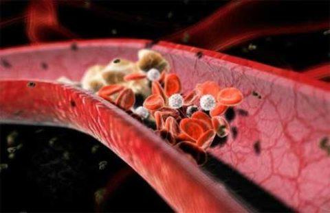 Адгезия клеток при тромбообразовании