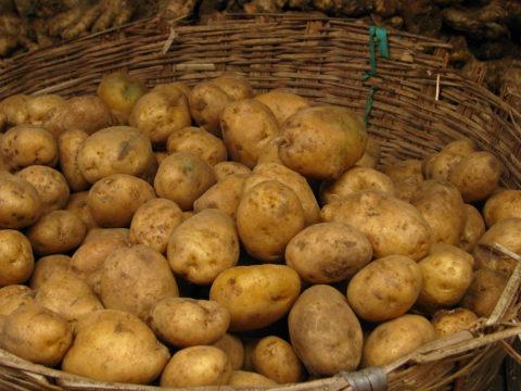 Потреблять жареную картошку не рекомендуется.