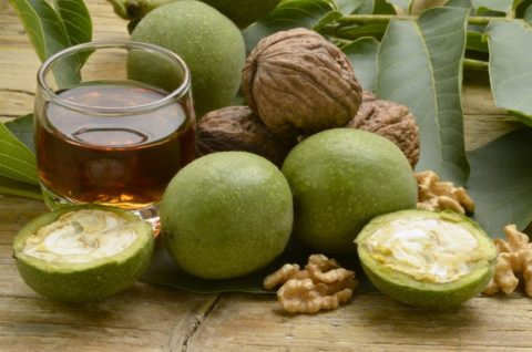Спиртовая настойка из зеленого грецкого ореха