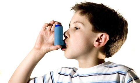 Больным с бронхиальной астмой употребление травяных сборов противопоказано