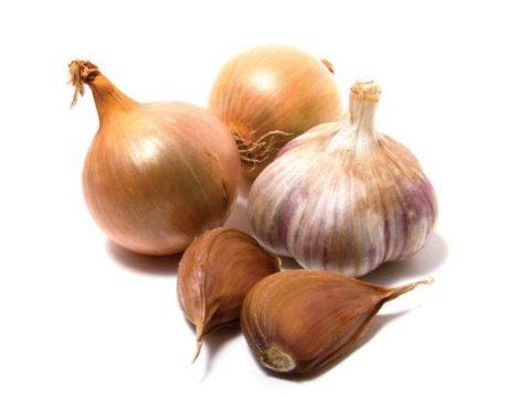 Лук и чеснок помогают бороться с плохим холестерином в крови