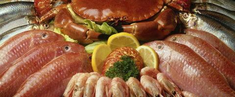 Обязательно следует кушать морепродукты