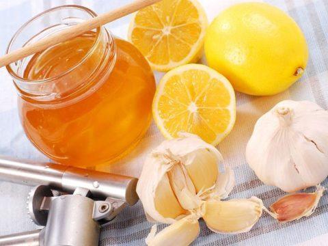 Очищение сосудов с помощью лимона, чеснока и меда