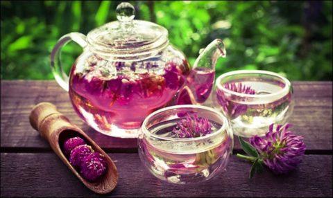 Клеверный чай