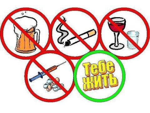 Вредные привычки провоцируют атеросклероз